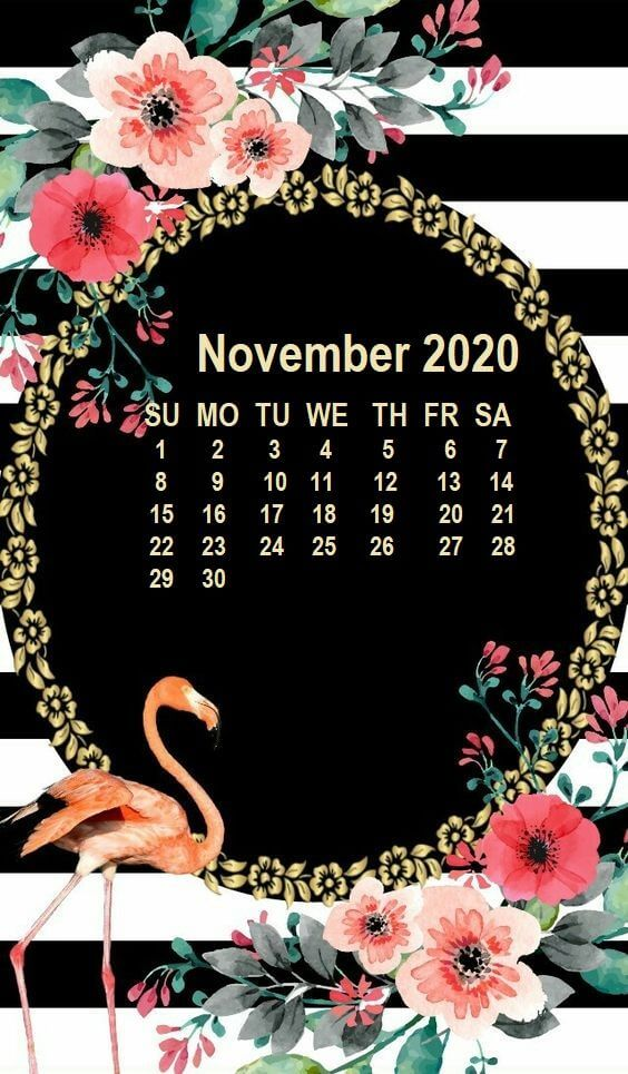 November 2020 iPhone Calendar Wallpaper