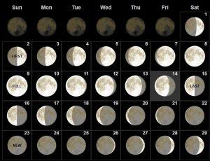 Full February 2020 Moon Phases Calendar