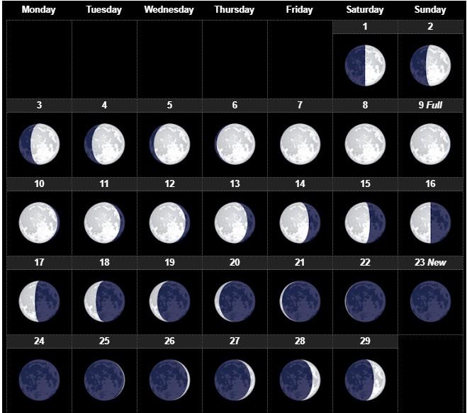 Lunar Calendar February 2020
